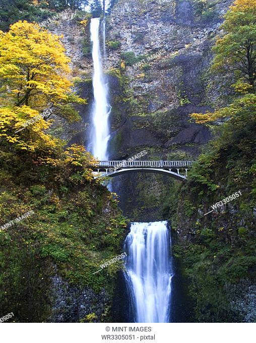 Waterfall and Bridge in Autumn