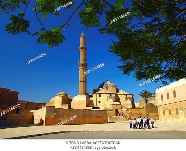 Pasha Sulayman Mosque , Citadel , Cairo , Egypt