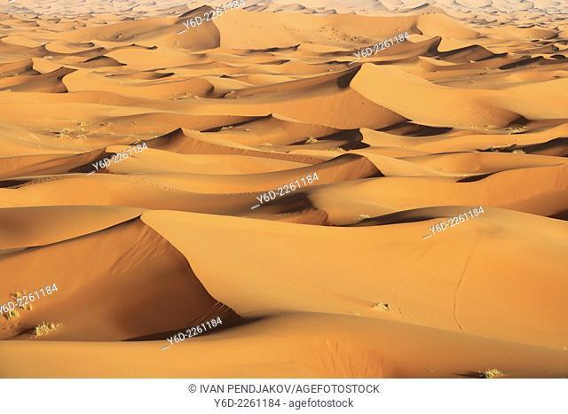 Sand Dunes, Merzouga, Sahara Desert, Morocco