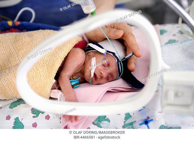 Incubator with newborn baby, Altona Children's Hospital, Hamburg, Germany