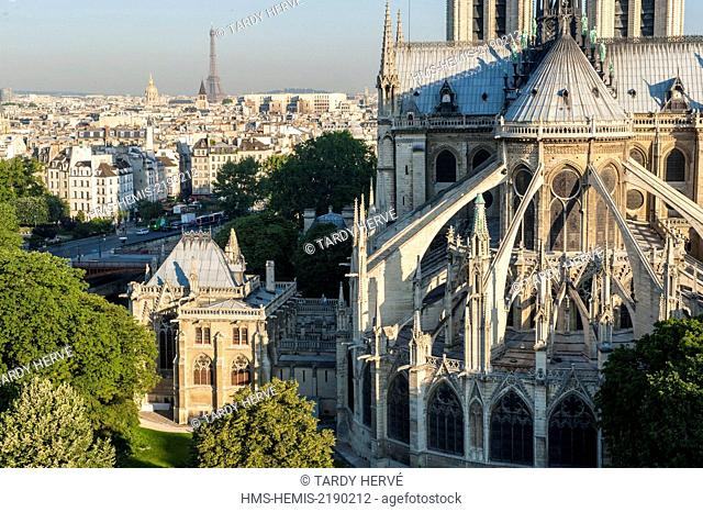 France, Paris, area listed as World Heritage by UNESCO, Notre Dame de Paris and the Square Jean XXIII gardens, (aerial view)