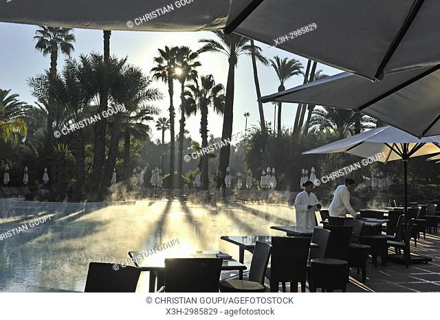 morning mist over the swimming pool of the luxury 5 stars hotel La Mamounia, Marrakesh, Marocco, North Africa