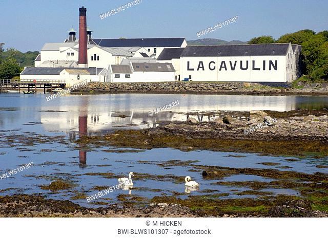 Lagavulin distillery, United Kingdom, Scotland, Islay