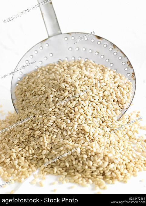 arroz integral / Integral rice