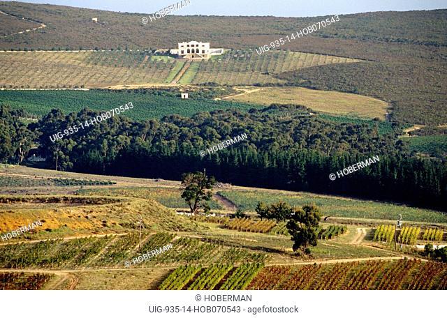 Hamilton Russel Wine Estate, Hemel & Aarde Valley, Hermanus, Western Cape