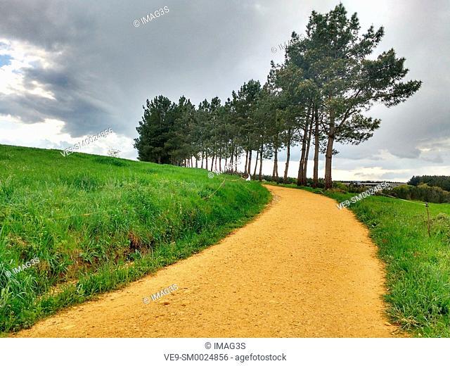 Camino de Santiago near Gonzar, between Portomarín and Palas de Rei, Lugo province, Spain
