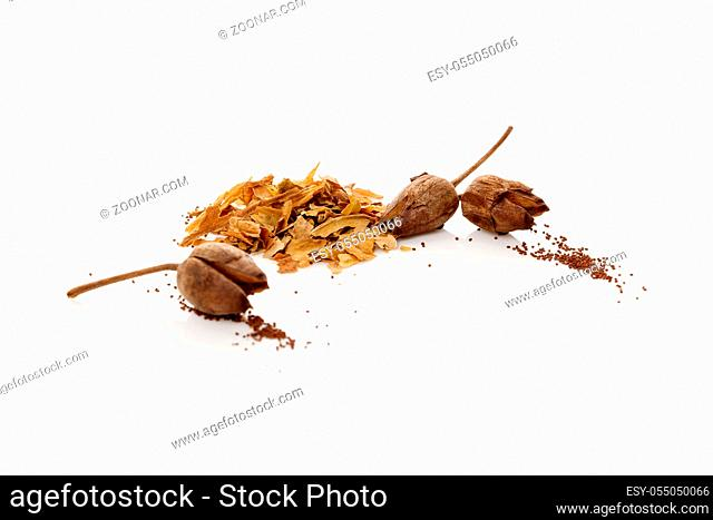 Crushed and dried tobacco leaves and tobacco seeds. Isolated on white background