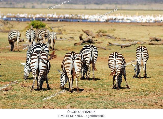 Tanzania, Rift Valley, Lake Manyara National Park