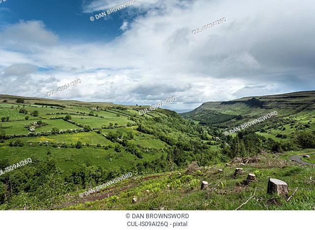 View of tree stumps and fields, Glenariff, County Antrim, Northern Ireland, UK