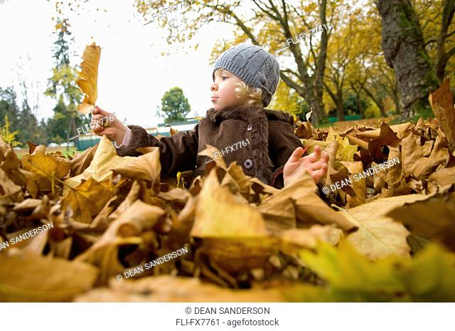 Little Girl in Leaf Pile at Park, Vancouver, British Columbia