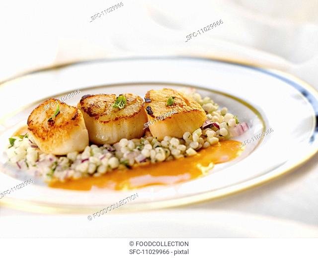 Three Seared Scallops on a Bed of Israeli Couscous on a White Plate