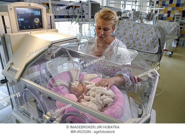 Mother of twins with one of her newborns in an incubator, Intensive Care Unit for Newborns, Karlovy Vary, Czech Republic, Europe