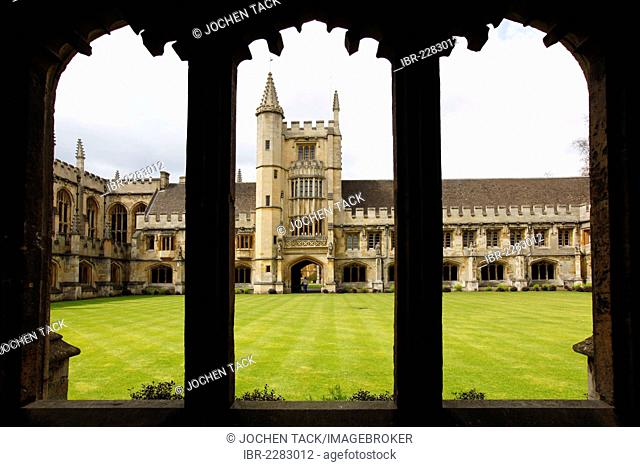 The Cloister, Magdalen College, one of 39 colleges, all of which are independent and together form the University of Oxford, Oxford, Oxfordshire, United Kingdom