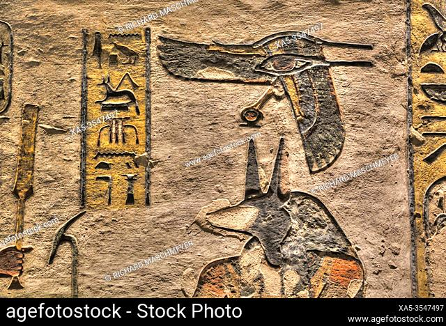Relief of the God Anubis, Tomb of Ramses III, KV #11, Valley of the Kings, UNESCO World Heritage Site, Luxor, Egypt