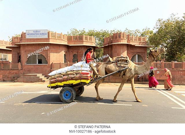 Street scene in front of the Junagarh Fort, Bikaner, Rajasthan, India
