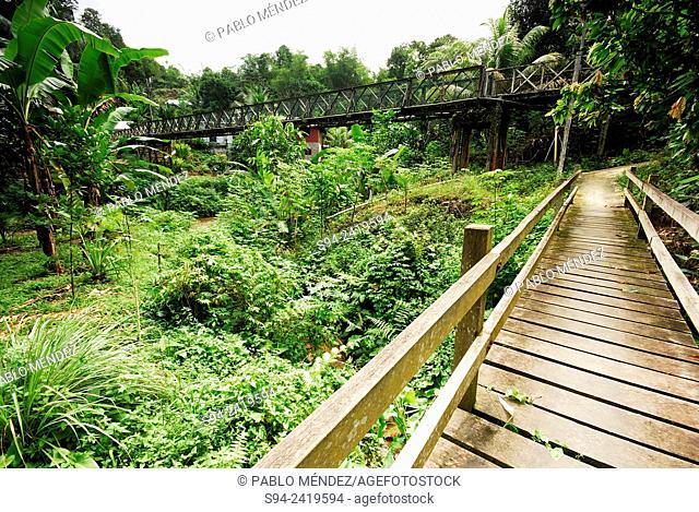 Bridge of Annah Rais town, Sarawak, Malaysia, Borneo