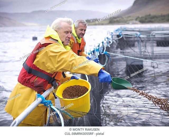 Worker feeding fish in farm