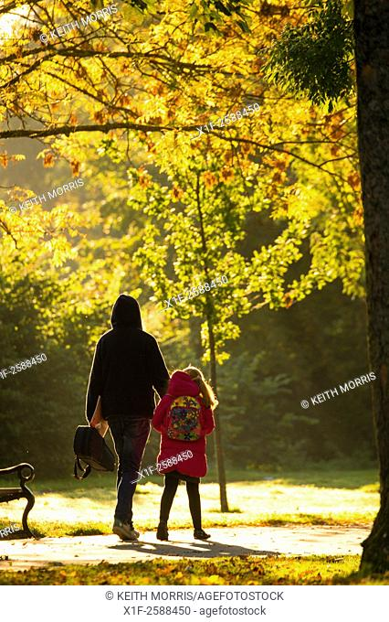 Aberystwyth Wakes UK, Tuesday 13 Octoiber 2015. . Parents and children walking and cycling to school along a leafy avenue in the early morning sunshine in...