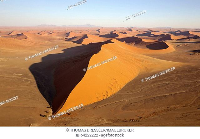 Sand dunes in the Namib Desert, camel thorn trees (Acacia erioloba) at the base of the dune, in the evening, aerial view, Namib-Naukluft National Park, Namibia