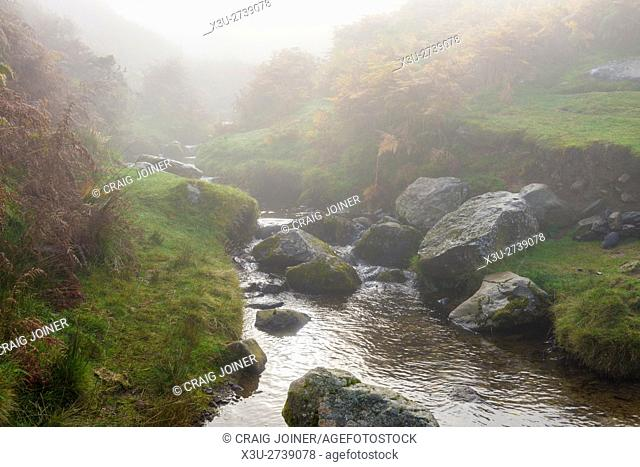 Mist over Aik Beck on Barton Fell in the Lake District National Park. Cumbria. England