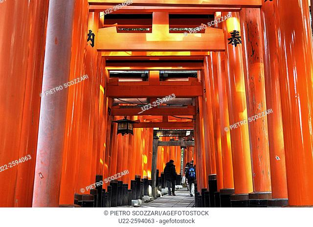 Kyoto, Japan, long line of Torii, traditional Japanese gate most commonly found at the entrance of or within a Shinto shrine
