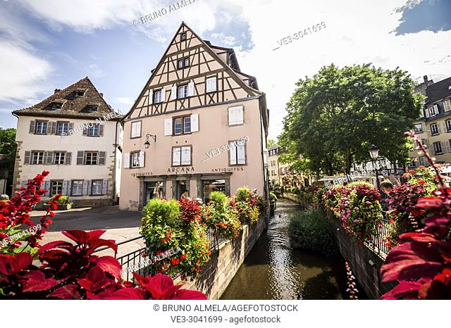 Water channel at Ancienne Douane square in Colmar, Alsace (department of Haut-Rhin, region of Grand Est, France)