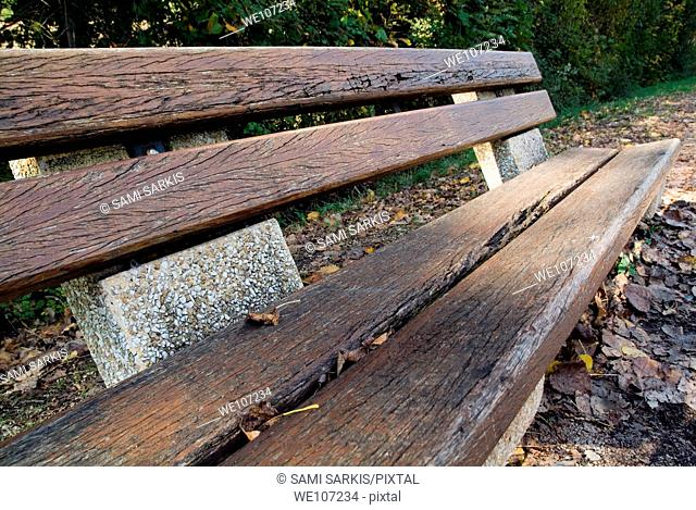 Empty park bench surrounded by autumn leaves