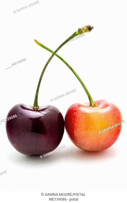 A rainier and black cherry isolated on a white background