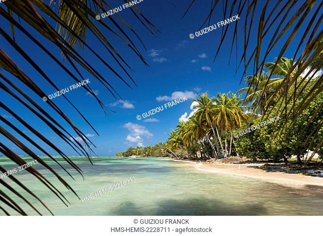 France, Guadeloupe (French West Indies), Marie Galante, Grand Bourg, Grand Bourg beach