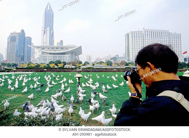 White pigeons at Renmin People's Square. Shanghai. China