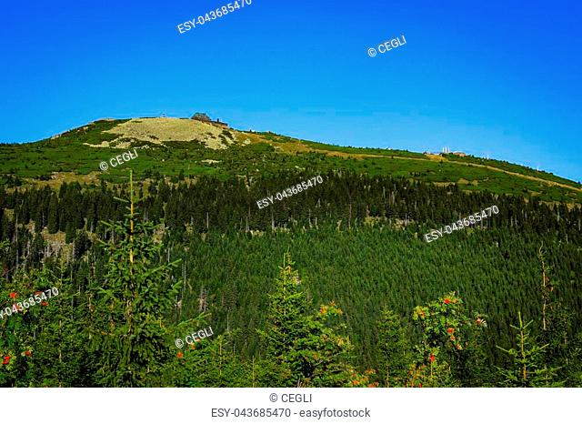 Szrenica hill in the Karkonosze National Park, Sudets in Poland. Summer view