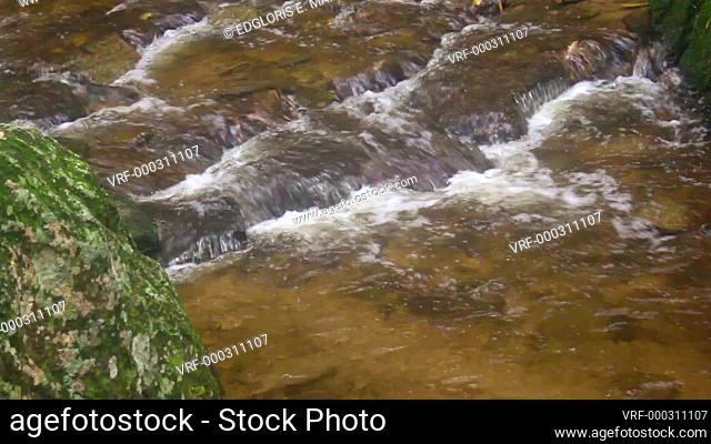 Flowing fresh water small creek in the rainforest Venezuela. Calm concept