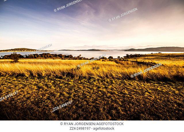Scenic tasmanian background encompassing long grasses opening to Tasmanian seas captured at dusk. Opossum Bay, Australia