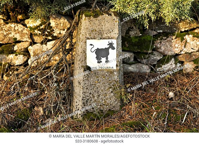 Via cattle milestone in Miraflores de la Sierra. Madrid. Spain