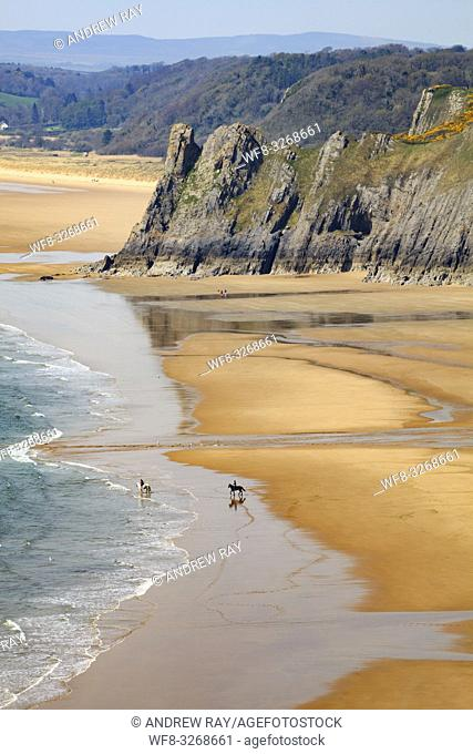 Horses on Three Cliff's Bay beach on the Gower Peninsula in South Wales, with Great Tor in the distance