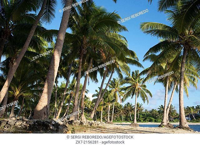 Aitutaki. Cook Island. Polynesia. South Pacific Ocean. Beach at Aitutaki Lagoon Resort & Spa Hotel. Paradise is a much-overused word