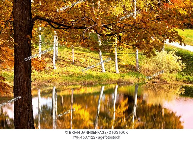 Autumn color reflections in pond near South Woodstock, Vermont, USA