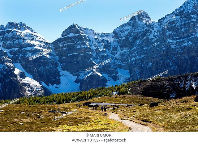 Hikers walk through Larch Valley, in Banff National Park