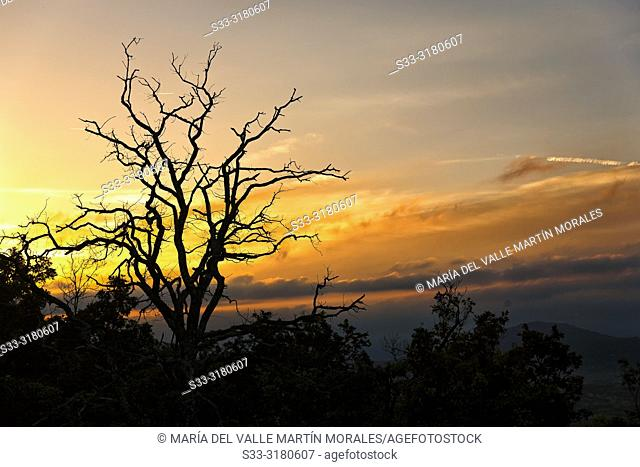Sunrise at La Berrocosa hill. Miraflores de la Sierra. Madrid. Spain