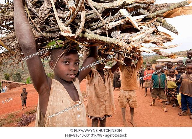 Boys carrying firewood on heads, standing on dusty village street, Rwanda