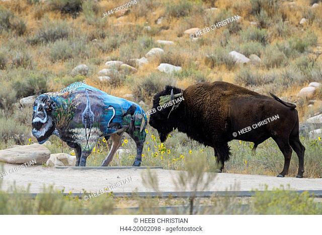 Utah, Davis County, Antelope Island State Park, Bison with Bison sculpture