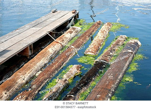 Boat dock finger