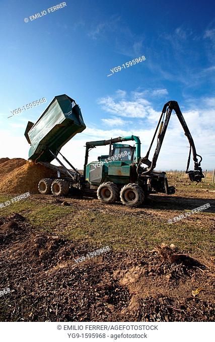Unloading crush wood from a biomass machine  LLeida  Spain