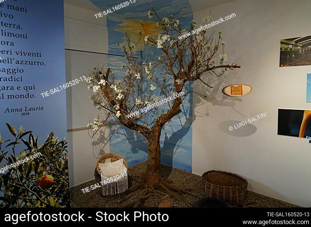 Views of the Muclem, a museum dedicated to the tangerines , Corigliano Rossano, ITALY-15-05-2020