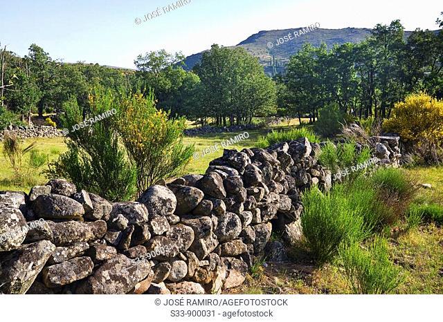 Vallados en la Sierra de Gredos  Castilla León  España