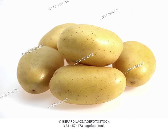 Mona Lisa Potato, Solanum tuberosum, Vegetables against White Background