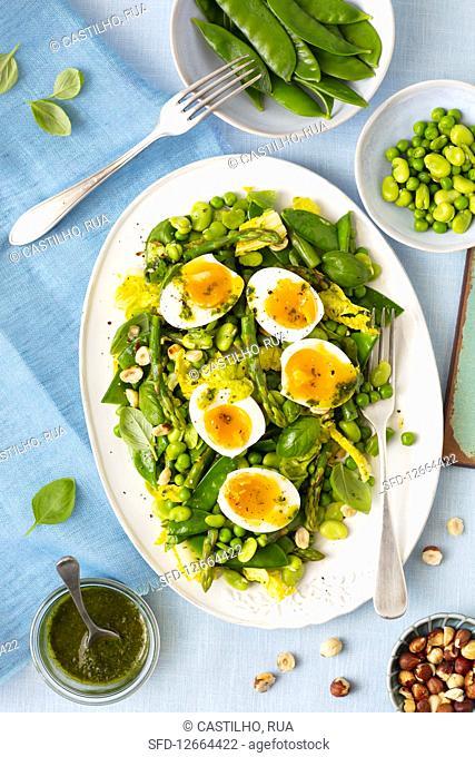 Asparagus, broadbean, snow peas salad with egg