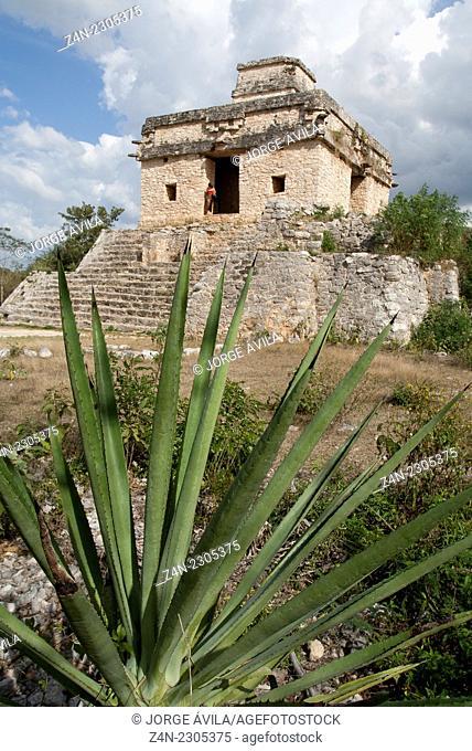 Dzibilchaltun, Maya site