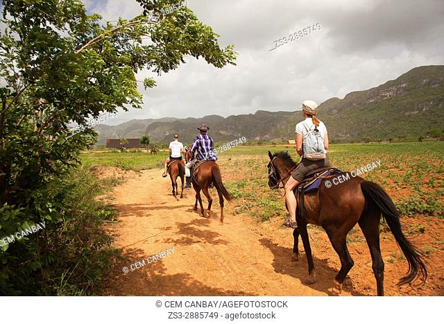 Tourist during a horseback riding in the countryside with their Cuban guide, Vinales, Pinar del Rio Province, Cuba, Central America