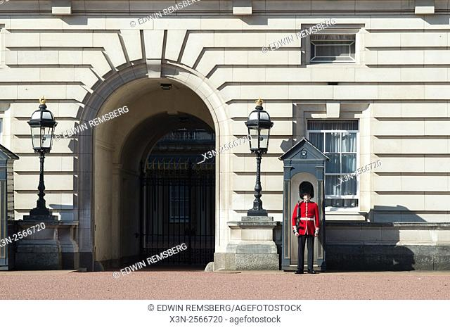 The Queen's Guard at Buckingham Palace in London, England